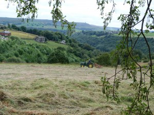 elmet-farmhouse-hay-meadows-2