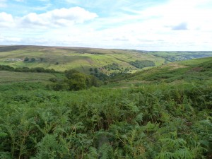 luddenden-dean-yorkshire-holiday-cottage-1