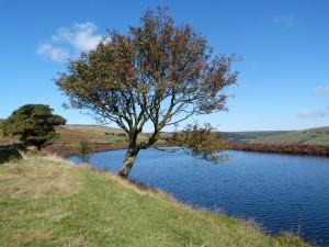luddenden-dean-yorkshire-holiday-cottage-18