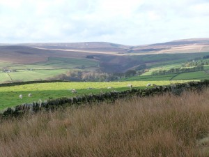 walshaw-hardcastle-crags-yorkshire-walking-holiday-5